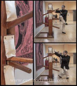 el Muñeco de Madera en el Kung Fu Choy Li fut Centro Dan Tian Zaragoza