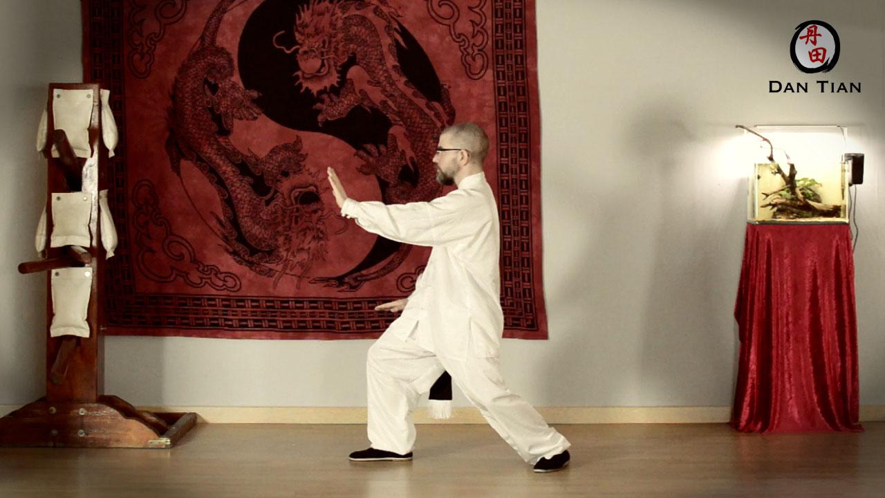 forma-de-8-movimientos-tai-chi-estilo-yang